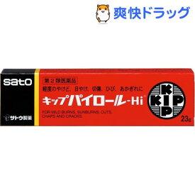 【第2類医薬品】キップパイロール-Hi(23g)【キップパイロール】