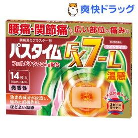 【第2類医薬品】パスタイムFX7-L 温感(セルフメディケーション税制対象)(14枚入)【パスタイム】