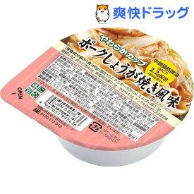 キッセイ やわらかカップ ポークしょうが焼き風味(60g)【キッセイ】
