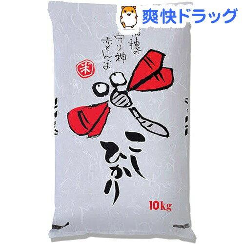 平成29年度産 兵庫県産こしひかり(10kg)【送料無料】