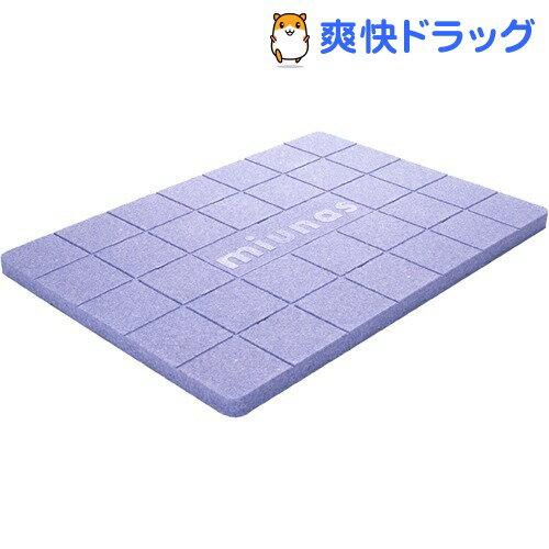 ビーライトスノコ ミウナス(1枚入)【送料無料】