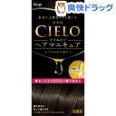 シエロ オイルインヘアマニキュア アッシュブラウン(100g+3g+10g)【シエロ(CIELO)】