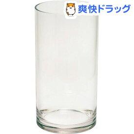 XZY 割れない花瓶 シリンダーベース MS PC-VR15035(1個)【XZY(エグジー)】