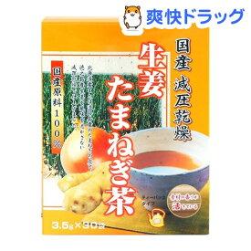 リケン 生姜たまねぎ茶(3.5g*30袋入)【ユニマットリケン(サプリメント)】