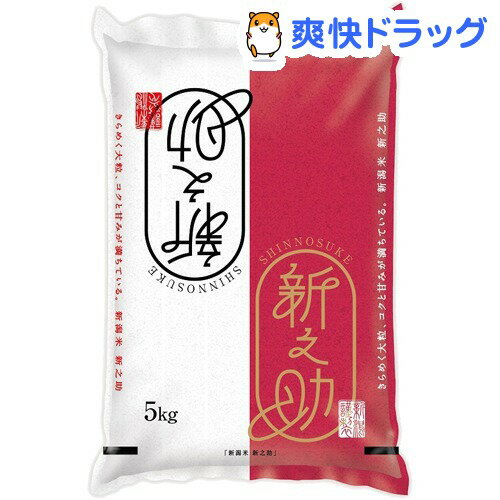 平成30年産 新潟県産新之助(5kg)【パールライス】