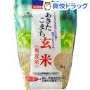 あきたこまち玄米 無洗米 鉄分強化(2kg)[鉄分 食品 無洗米]