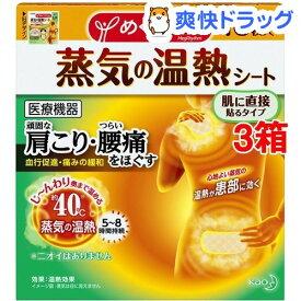 めぐりズム 蒸気の温熱シート(16枚入*3箱セット)【めぐりズム】