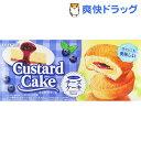 カスタードケーキ ブルーベリーチーズケーキ(6コ入)