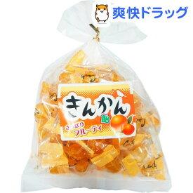 おいしいのど飴 きんかん(210g)