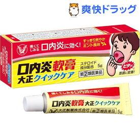 【第(2)類医薬品】口内炎軟膏 大正クイックケア(5g)