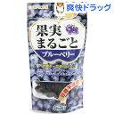 【訳あり】サンライズ 果実まるごと ブルーベリー(40g)