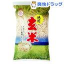 南国製菓 徳用玄米(260g)