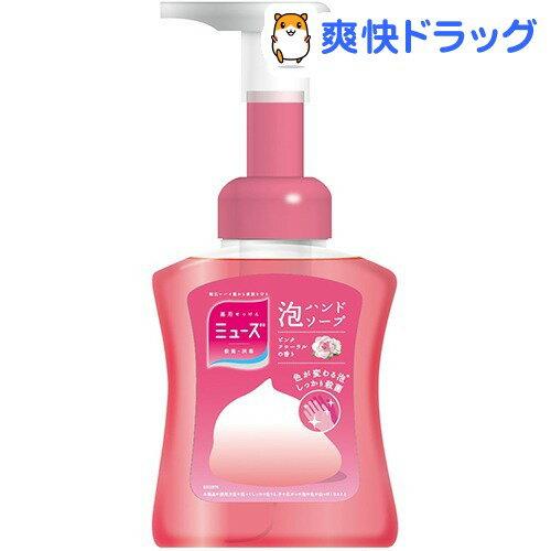 ミューズ 泡ハンドソープ 泡モイスト 本体(250mL)【ミューズ】