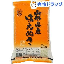 令和元年産 山形県産はえぬき(5kg)【野上米穀】[米]