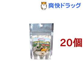 自然派宣言 かぼちゃの種(30g*20コセット)【自然派宣言】