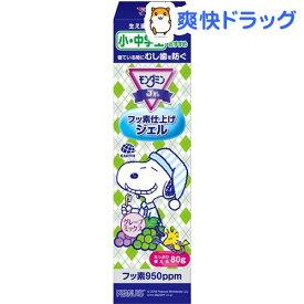 モンダミンジュニア フッ素仕上げジェル グレープミックス味 子供用(80g)【モンダミン】