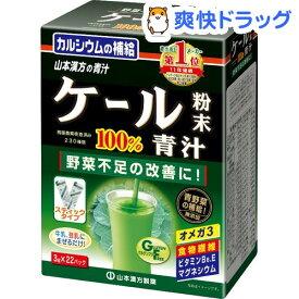 山本漢方 ケール粉末100% スティック(3g*22パック)【山本漢方 青汁】