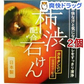 W柿渋配合石けん(100g*2コセット)
