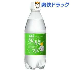 国産 天然水仕込みの炭酸水 グレープフルーツ(500mL*24本入)[炭酸水 500ml 24本 国産 強炭酸水]