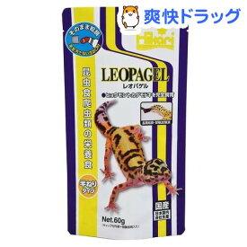 ひかり レオパゲル(60g)【ひかり】