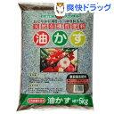 SUNBELLEX 油粕(5kg)【SUNBELLEX】