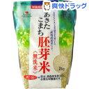 あきたこまち胚芽米 無洗米 鉄分強化(2kg)[無洗米]