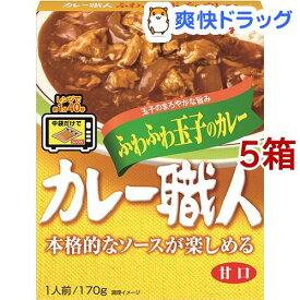 カレー職人 ふわふわ玉子のカレー 甘口(170g*5箱セット)【カレー職人】