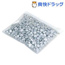 カイハウスセレクト パイ重し DL6305(約300g)【Kai House SELECT】