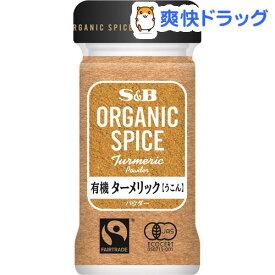 ORGANIC SPICE 有機 ターメリック パウダー(17g)