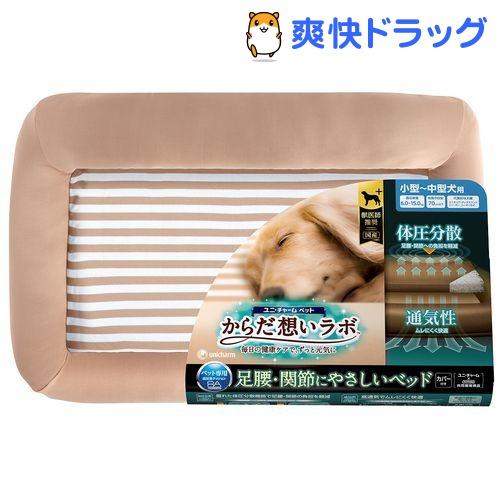 からだ想いラボ 足腰 関節にやさしいベッド 小〜中型犬用(1セット)【d_ucd】