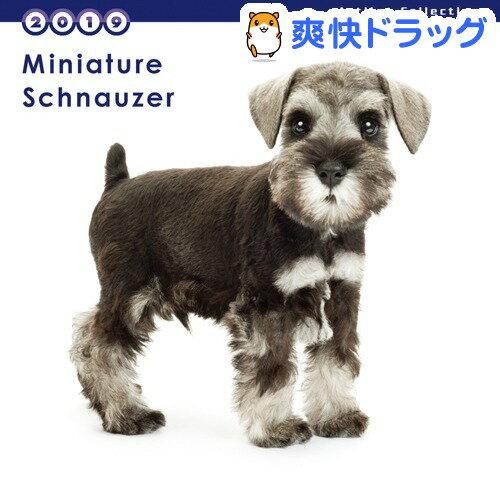 THE DOG 2019年ミニカレンダー ミニチュア・シュナウザー(1コ入)【ザ ドッグ(THE DOG)】