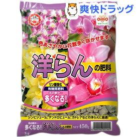 洋らんの肥料(450g)【日清ガーデンメイト】