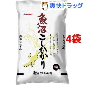 令和2年産 魚沼こしひかり(5kg*4袋セット(20kg))【パールライス】