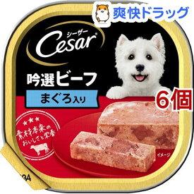 シーザー 吟選ビーフ まぐろ入り(100g*6個セット)【シーザー(ドッグフード)(Cesar)】[ドッグフード]