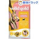 ソリッドゴールド フントフラッケン(6.8kg)【ソリッドゴールド】【送料無料】