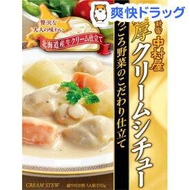 新宿中村屋 濃厚クリームシチューごろごろ野菜のこだわり仕立て(210g)【新宿中村屋】