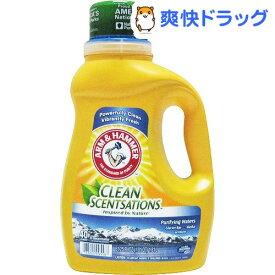 アーム&ハンマー 洗濯用洗剤 ピュリファイウォーター グレイシャーベイ(1.84L)【アーム&ハンマー】