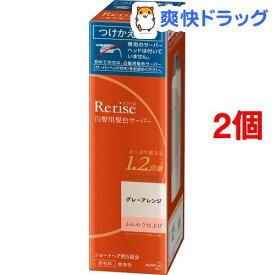 リライズ 白髪用髪色サーバー グレーアレンジ ふんわり仕上げ つけかえ専用(190g*2個セット)【リライズ】