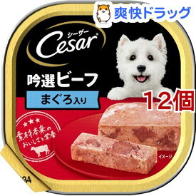シーザー 吟選ビーフ まぐろ入り(100g*12個セット)【シーザー(ドッグフード)(Cesar)】[ドッグフード]