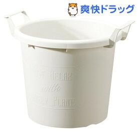 グロウコンテナ 40型 ホワイト(1コ入)【大和プラスチック】