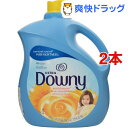 ダウニー サンブロッサム(3.83L*2コセット)【ダウニー(Downy)】[柔軟剤]