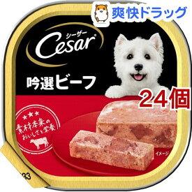 シーザー 吟選ビーフ (100g*24コセット)【d_cesar】【シーザー(ドッグフード)(Cesar)】[ドッグフード]