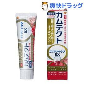 カムテクト コンプリートケアEX 歯周病(歯肉炎・歯槽膿漏)予防 歯磨き粉(105g)【カムテクト】
