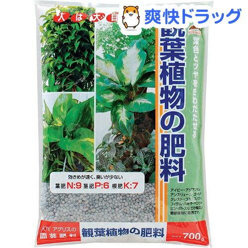 JOYアグリス 観葉植物の肥料(700g)【JOY AGRIS】