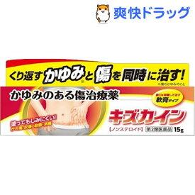 【第2類医薬品】キズカイン(15g)
