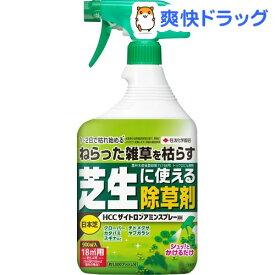 HCCザイトロンアミンスプレー(900ml)【住友化学園芸】[除草剤]