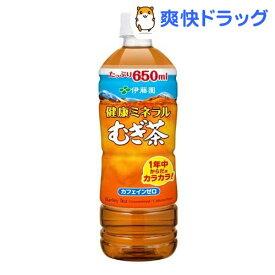 伊藤園 健康ミネラルむぎ茶(650ml*24本)【健康ミネラルむぎ茶】[麦茶]