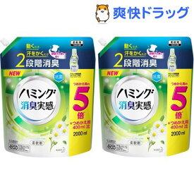 ハミング 消臭実感 柔軟剤 リフレッシュグリーンの香り つめかえ用 メガサイズ(2000ml*2袋セット)【ハミング】