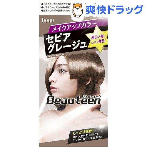ビューティーン メイクアップカラー セピアグレージュ(40g+88mL+5mL)【ビューティー