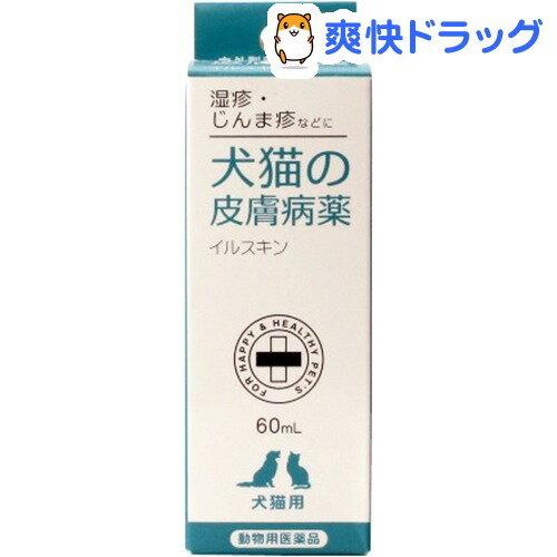【動物医薬品】犬猫の皮膚病薬 イルスキン(60mL)【171110_soukai】【171027_soukai】